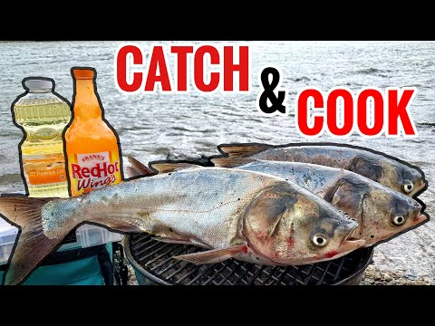 Eating INVASIVE FISH!! - Asian Carp Catch & Cook!!