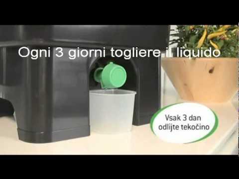 Compostiera domestica - YouTube