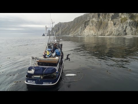 Searching the Shumagin islands - Alaska surf discovery