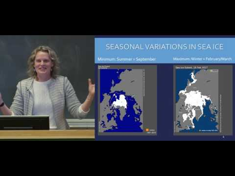 The Once and Future Arctic, Stephanie Pfirman