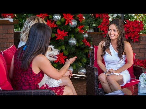 Danica McKellar Christmas at Dollywood