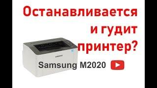 Останавливается и гудит принтер samsung m2020, ремонт