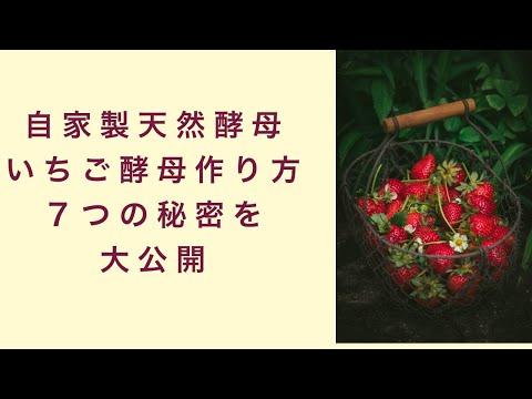 【自家製天然酵母】いちごを使った酵母の作り方7つの秘密を大公開 フルーツ酵母 自家製天然酵母 パン教室 教室開業 大阪 奈良 東京 名古屋 オンライン講座