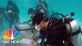 Maldives Bans Single-Use Plastics To Stem Flow Of Ocean Trash   NBC News NOW
