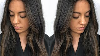 Subtle Brunette Balayage // Fall Hair Color Tutorial Using Redken Shades EQ // Daniella Benita