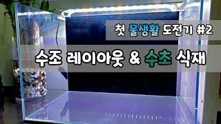 [첫 물생활 도전기 #2] 수조 레이아웃│수초 식재