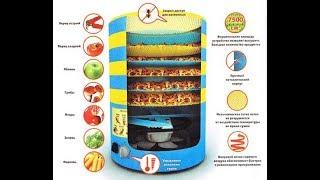 Сушилка для овощей и фруктов электрическая. СУ-1У. Обзор