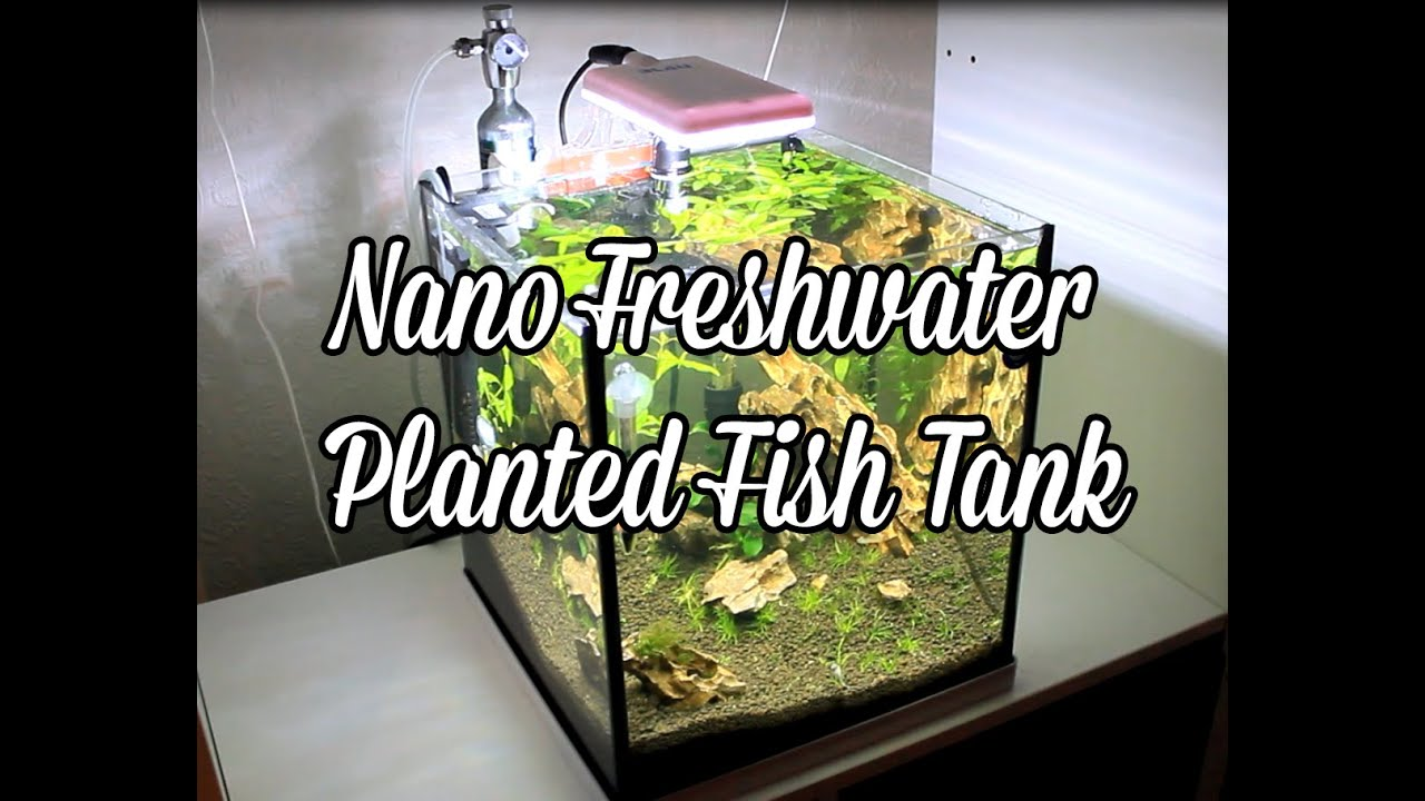 Nano led aquarium fish tank lighting - Nano Freshwater Planted Tank Led Lights