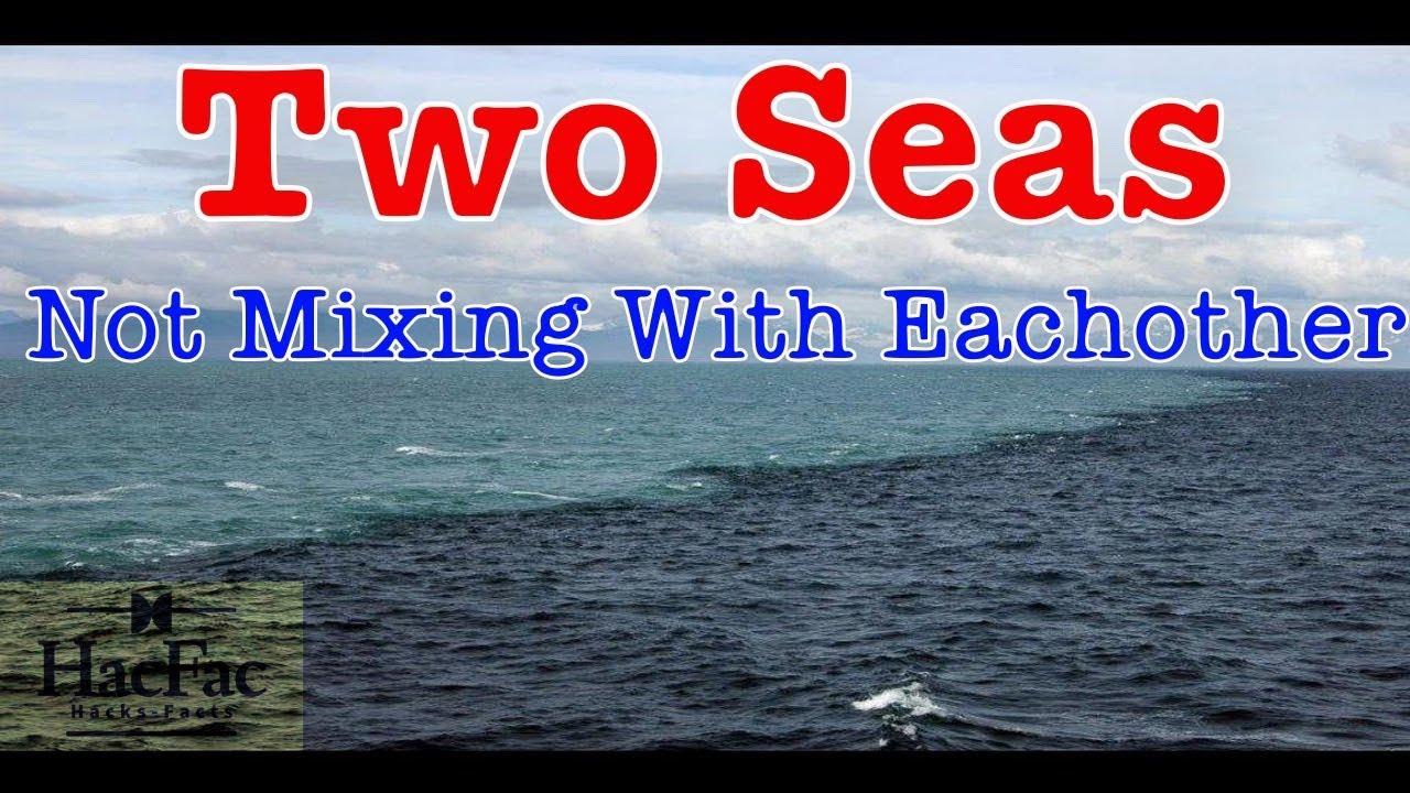 two oceans meet quran mp3
