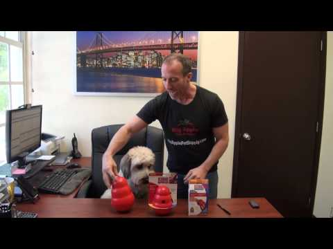KONG Wobbler - Dog Food & Treat Feeder and Interactive Dog Toy