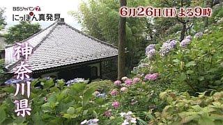 6月26日(日)夜9時放送】 舞台は神奈川県。紫陽花の見ごろを迎える鎌倉で...