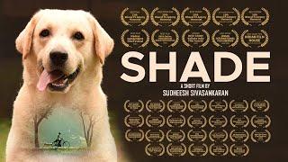 Shade Short Film   The Shade   Shade Short Movie   Short Movie about Pets   Environment Day Movie