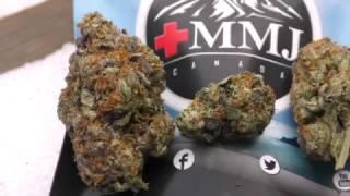 Marijuana Monday Pink Bubba Review
