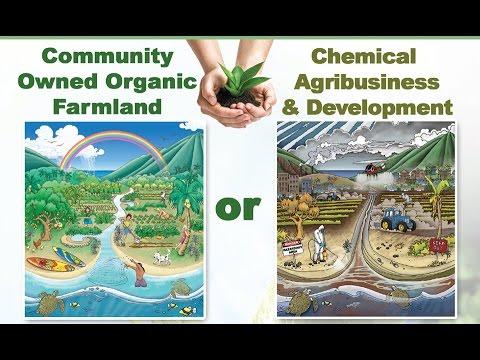 The Count Down Has Begun - Maui Farmland Initiative