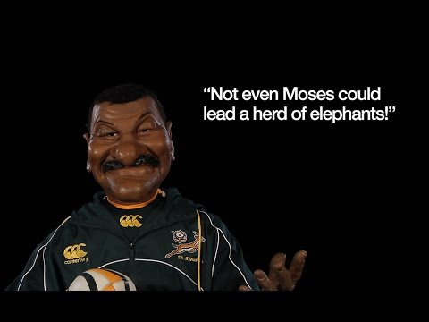 Divvy's advice to the Springbok squad