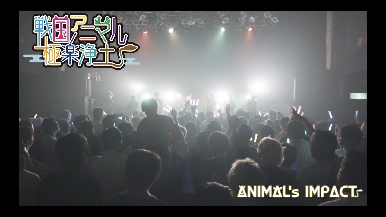輪廻転生 - 「ANIMAL's IMPACT」