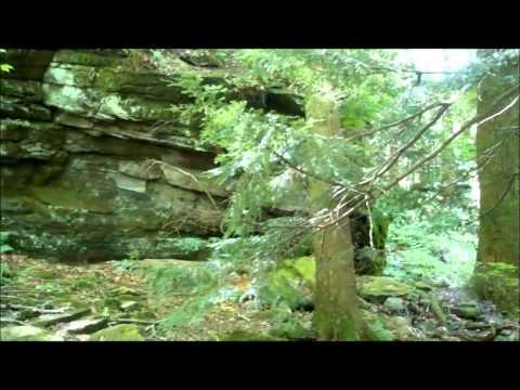 A Traveling Wayne:Pennsylvania
