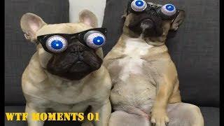 Ga Nonton Rugi Ketawa | WTF Moments 01