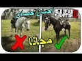 كيف تجيب افضل حصان   الخيل العربي الاسود ببلاش! - ريد ديد 2