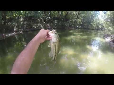 White Rock Creek Top Water Fishing