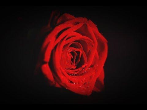 Romantic Turkish Music & Türk aşk şarkıları    Turkish Music Sad Instrumental Songs