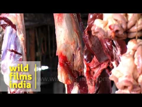 Who says Indians are vegetarian? See a meat shop in India