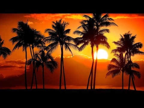 Relaxing Sleep Music 24/7, Calming Music, Insomnia, Sleeping Music, Meditation, Spa, Sleep, Study