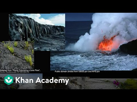 Ecological succession  | Ecology | Khan Academy