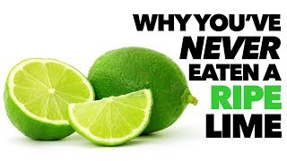 Why Ripe Limes Are NOT Green