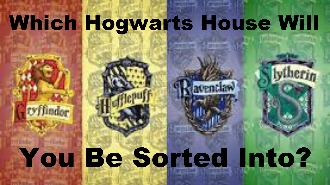 Harry Potter What House Are You 3