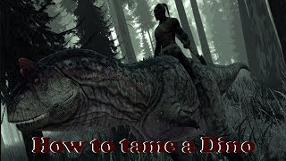 How to train and ride Dinosaurs on The Stomping land