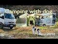 【車中泊】 粕川キャンプ場 Camping with Dog