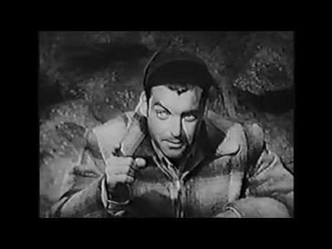 "RORY CALHOUN: ""THE LOOTERS"" (1955)"
