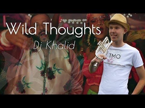 Dj Khalid - Wild Thoughts (TMO Cover)