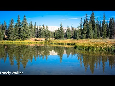 069 WY: Medicine Bow National Forest, beautiful!