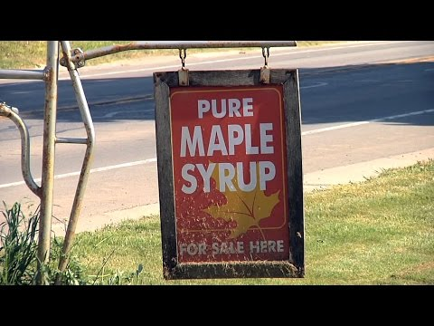 NY Road Trip: Maple Syrup A Sweet Business For New York Producers