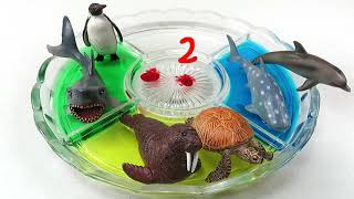 Learning Colors Video For Kids Dye Coloring Sea Animals Names Educational Fun Toys Babies Children #