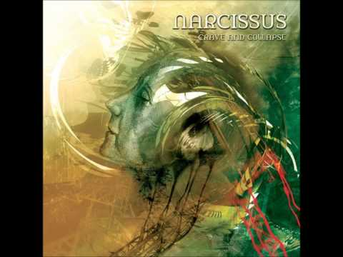 Narcissus - Seveneight