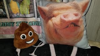 POOP EMOJI SCARES MINI PIG & CAT 😂 IT'S THE LITTLE THINGS THAT MAKE LAUGH 😂