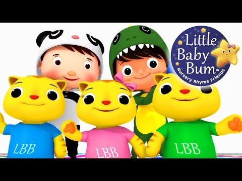 Nursery Rhyme Videos   *Volume-19*   Compilation from LittleBabyBum!   Live Stream!