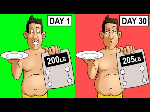 intermittent-fasting-but-not-losing-weight