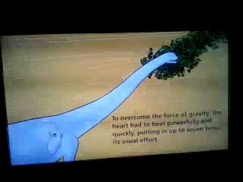 american museum of nh sauropod exhibit