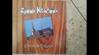 Zjuul Krapuul - Schizo...