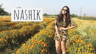 Nashik Travel Vlog | Visiting Sula Vineyard | Dhruva Gandhi