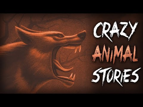 7 True Scary Animal Encounter Horror Stories