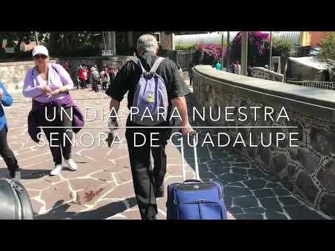 Un día con la Virgen de Guadalupe