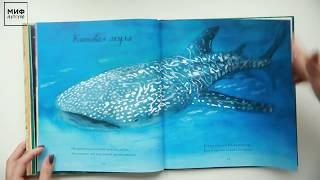 Стихи + иллюстрации = «Красивая книга о животных»