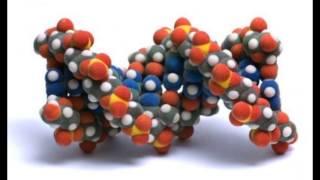 Химия от MrDedich / 4 урок/ Молекулы. Химические формулы.