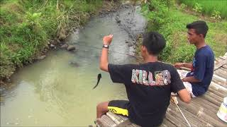 Download Mp3 Mancing Emosi - Xi Ipa 1 Sma Ma'arif Karangmoncol