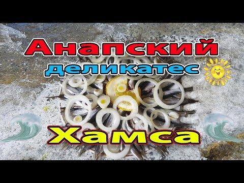 Хамса - ЭТО ДЕЛИКАТЕС. Анапское счастье Зимой. Анчоус